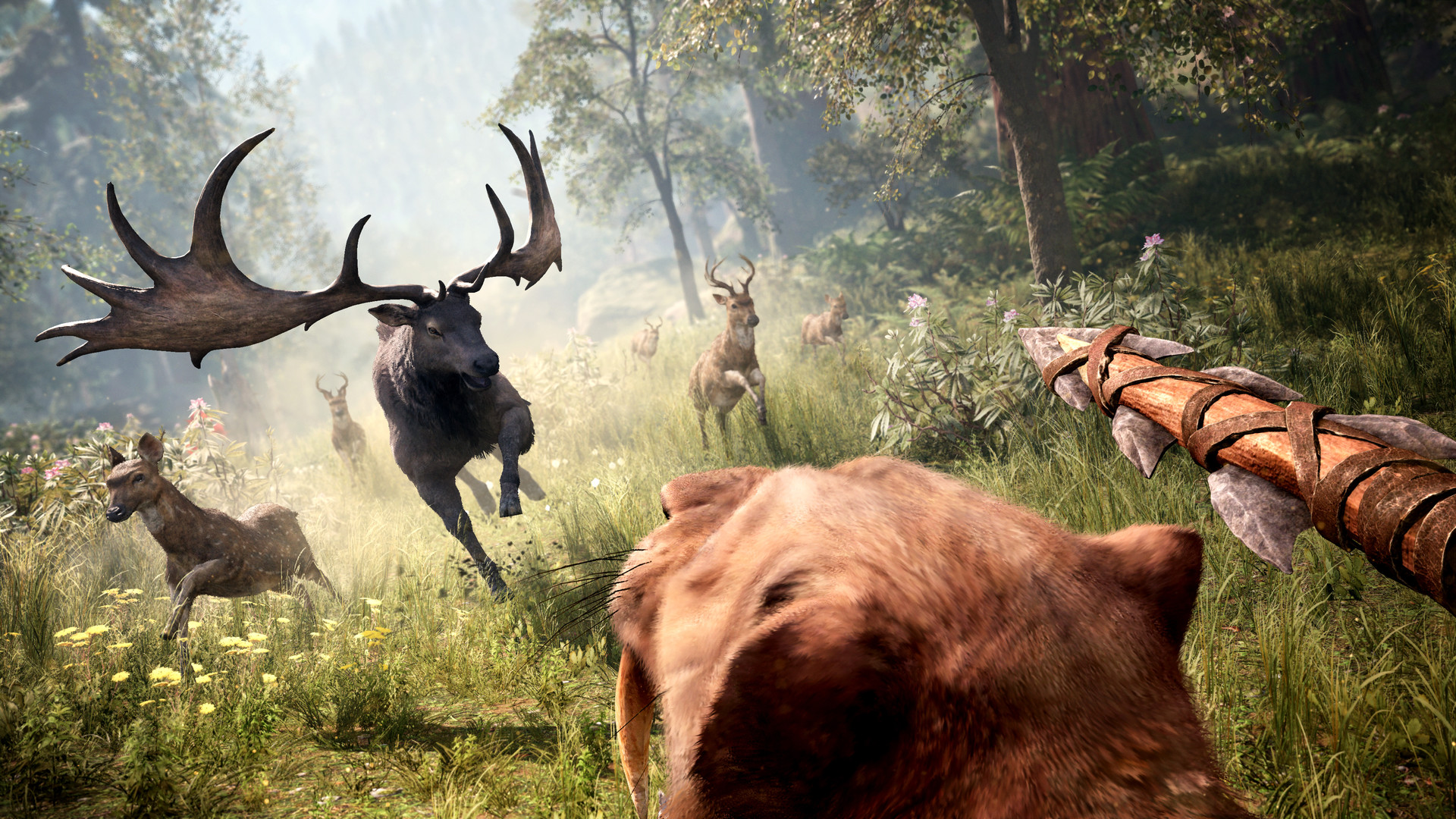 far cry primal torrentz2.eu