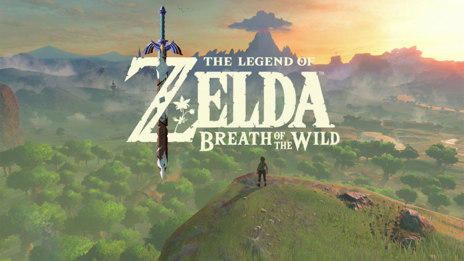 breath of the wild wii u install